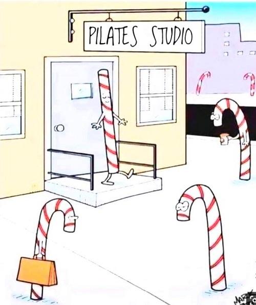 Pilates Studio Pilates Kurse Wien